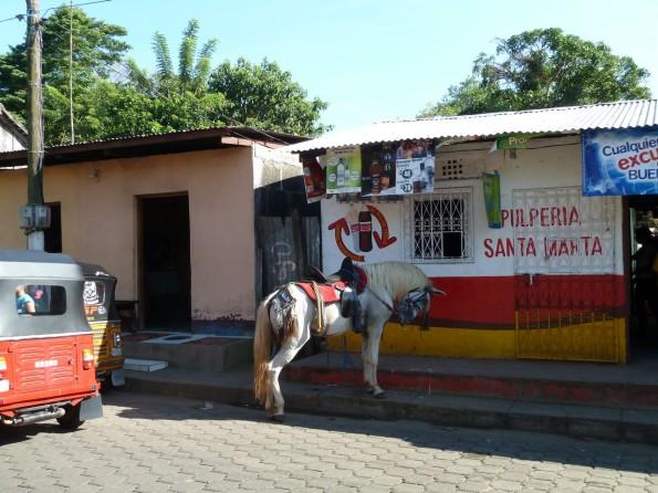 Catarina - store